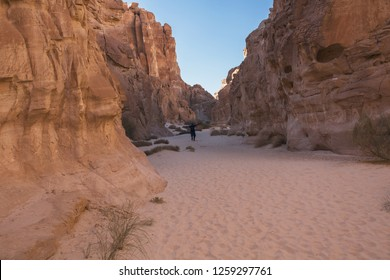 Wadi Watir, Sinai / Egypt - May 25 2018 : The Colored Canyon, one  of the most magnificent rock formations / geological phenomenons. It exists in wild Sinai desert with its lizards and wild animals