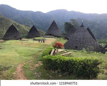 Wae Rebo Village in Flores, East Nusa Tenggara, Indonesia. Just enjoy 2.5 hours trekking to the hills and you will find the beautiful village on the top with unique traditional houses