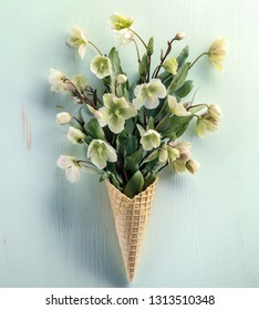 Waffle cone with tibetan hellebore flower