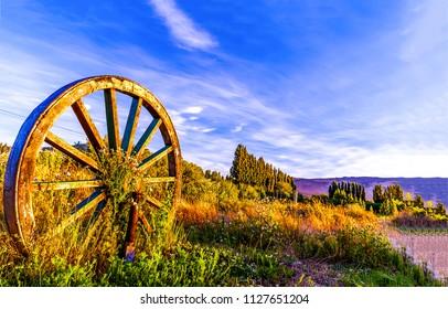 Wagon wheel on evening rural field landscape