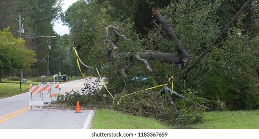 Wagram, North Carolina, United States/September 18, 2018: Power line that went down during Hurricane Florence