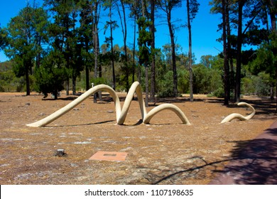 The Wagyl a mythical aboriginal rainbow serpent in  Piney Lakes parkland,  Melville, Perth, Western Australia is a fascinating artwork symbolic of the Noongar dreamtime.