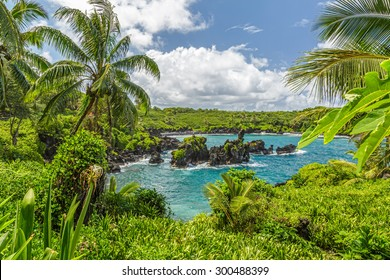 Waianapanapa State Park, home to a black beach, a popular destination on the Road to Hana on Maui, Hawaii