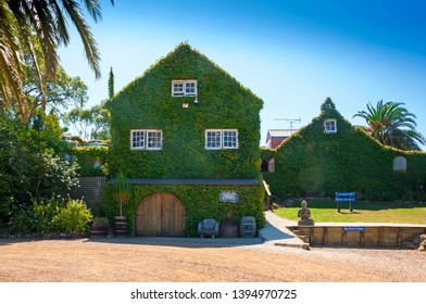 Waiheke Island, Auckland, New Zealand, March 2019. House walls of the winery overgrown with green ivy, vertical garden on the facade of the building