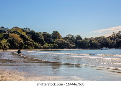 Waiheke Island, New Zealand - June 09, 2018: People enjoying a sunny day on Waiheke Island, New Zealand.