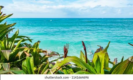 Waikiki Beach in Honolulu, Oahu Island, Hawaii, USA. Waikiki Beach in the center of Honolulu has the largest number of visitors in Hawaii.