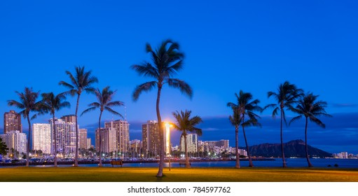 Waikiki beach skyline at dusk with palm trees