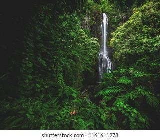 Wailua Falls and surrounding jungle, off the infamous Hana Highway on the island of Maui, Hawaii, USA