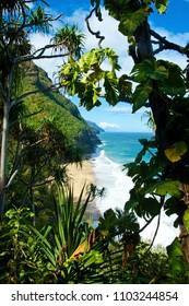 The Wailua falls trail, Kauai
