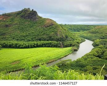 Wailua River - Kaua'i, Hawaii