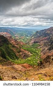 Waimea Canyon from Puu Hinahina Lookout