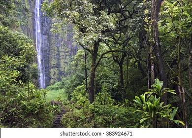 Waimoku Falls on the Pipiwai trail, Kipahulu state park, Maui, Hawaii