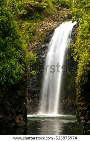 283590dc25b2e1 Wainibau Waterfall at the end of Lavena Coastal Walk on Taveuni Island, Fiji.  Taveuni is the third largest island in Fiji. - Image