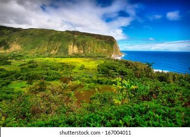 Waipio Valley view in Big island, Hawaii