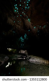 Waipu Cave. Illuminated Glow Worm similar to Sky in dark cave. North Island, New Zealand