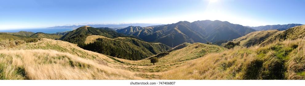 Wairarapa panorama