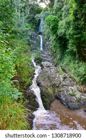 Wairere Falls in the town of Whakatane at Bay of Plenty, New Zealand