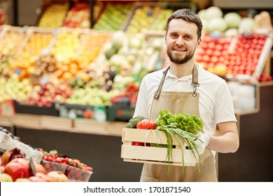 Waist up portrait of bearded man holding box of vegetables and smiling at camera while selling fresh produce at farmers market, copy space