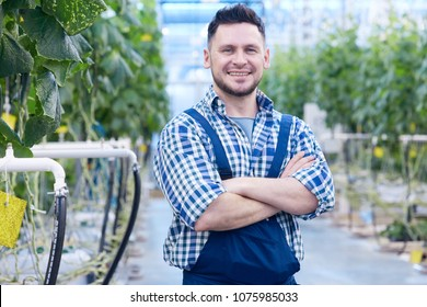 Waist up portrait of cheerful plantation worker posing standing with arms crossed and looking at camera  in greenhouse, copy space