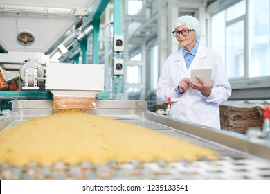 Waist up portrait of senior woman working at food factory standing by conveyor belt and using digital tablet during quality inspection, copy space