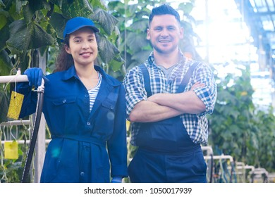 Waist up portrait of two modern plantation workers posing in greenhouse looking at camera and smiling happily, copy space