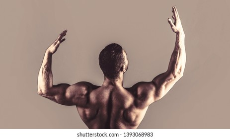 Waist, waistline. Guy with beautiful torso. Muscular back, muscular man, muscled back, naked torso. Male naked, healthy musculars guy, torso man.