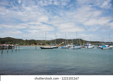 Waitangi, North Island, New Zealand-December 18,2016: Sailboats and yachts in marina surrounded by the rolling green landscape in Waitangi, New Zealand