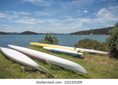 Waitangi, North Island, New Zealand-December 18,2016: Sea kayaks on the Tasman Sea water fron​t with lush, green landscape in Waitangi, New Zealand