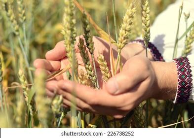 Waiting for good harvest