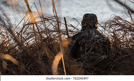 """Waiting for Prey"" - On a freezing morning in Canada, a duck hunter waits silently in the grass for ducks to approach the area."