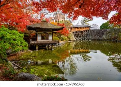 Wakayama castle in the autumn park, Momijidani Teien Garden in Wakayama castle, japan