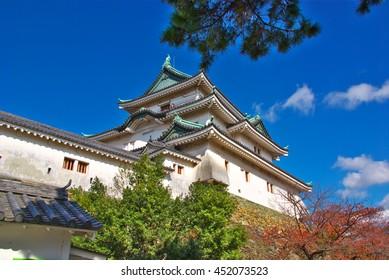 Wakayama castle with fall foliage,Wakayama Japan