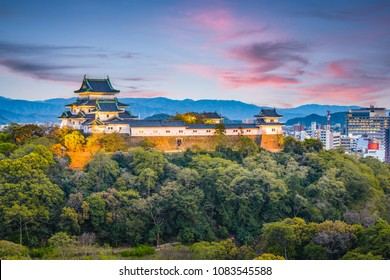Wakayama City, Japan castle park and downtown cityscape at dusk.