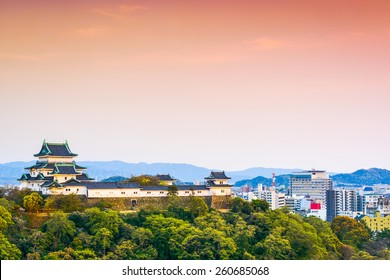 Wakayama, Japan Castle and downtown cityscape.