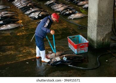 WAKAYAMA, JAPAN - NOVEMBER 20, 2015: Katsuura Nigiwai Market is the biggest fish market in Wakayama prefecture, Maguro tuna auctions held every morning started at 7.30 daily