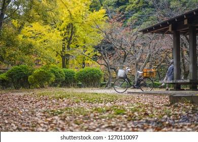 Wakayama - Nov. 17,18: Japanese is seen relaxing in a park near Wakayama Castle