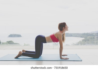 wake up with yoga. Asian woman practicing yoga, Asian woman practicing yoga to burn fat and lose weight. Yoga Poses for Back Pain Bitilasana. Healthy,better-Back Workout
