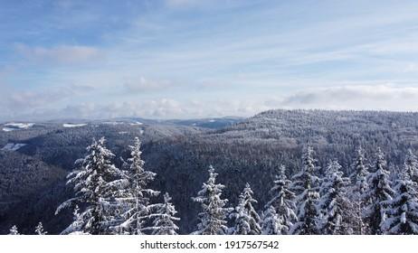 Wald im Schwarzwald im Winter mit Schnee - Shutterstock ID 1917567542