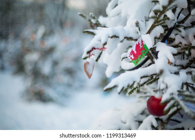 Wales flag. Christmas background outdoor. Christmas tree covered with snow and decorations and Welsh flag. New Year / Christmas holiday greeting card.
