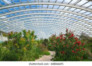Wales, UK, May 7, 2015. Interior of the National Botanic Garden of Wales, llantharne, Carmarthenshire