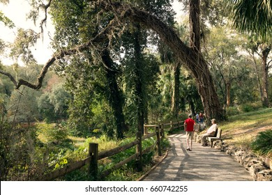 Walk along the park path with fencing and benches. Rainbow Springs, Florida State Parks, USA