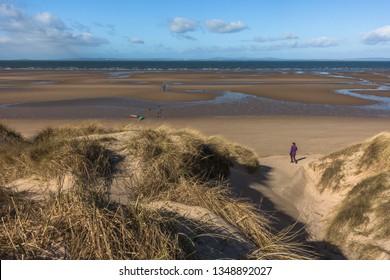 Walk around Aberlady Bay Local Nature Reserve in East Lothian, Scotland. Dunes near Gullane Sands.