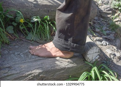 walk barefoot in the park of the zoo
