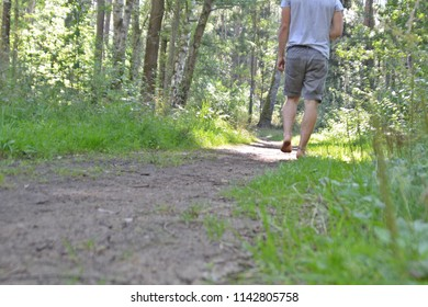 Walk barefoot in the summer through the forest and feel the nature at your feet