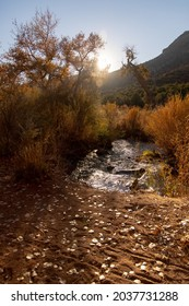The walk by the creek just before sunset at Vista Linda Campground, Santa Fe National Forest, Jemez Springs, Sandoval County, New Mexico, USA. Land of Jicarilla Apache, Pueblos