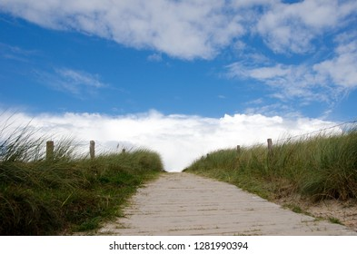 Walk in the dunes of the North Sea island Langeoog