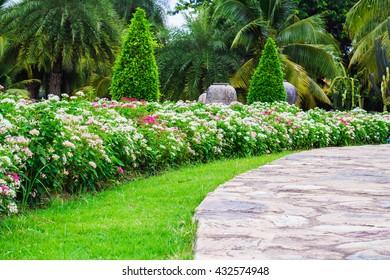 Walk in the flower garden