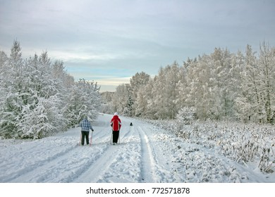 walk in the fresh air in winter