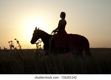 Walk on horseback. Silhouette of woman and stallion at sunset. Lonely girl on horse