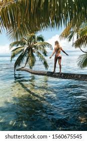 walk on palm tree tahiti